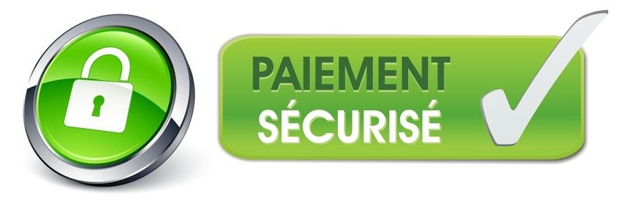 Logo Paiement Securise